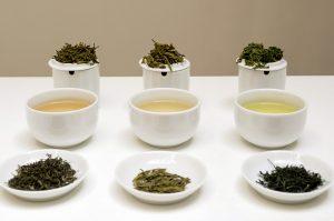 Kininio arbatmedžio arbatžolės