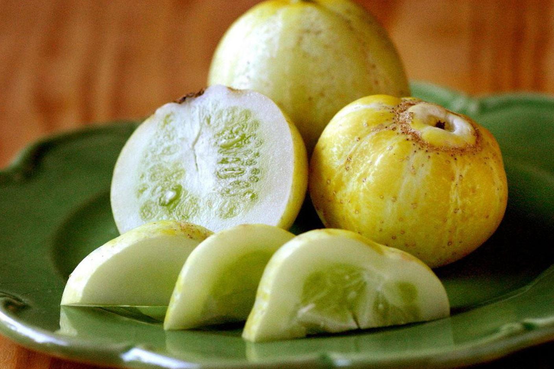 Apvalūs agurkai (citrininiai)