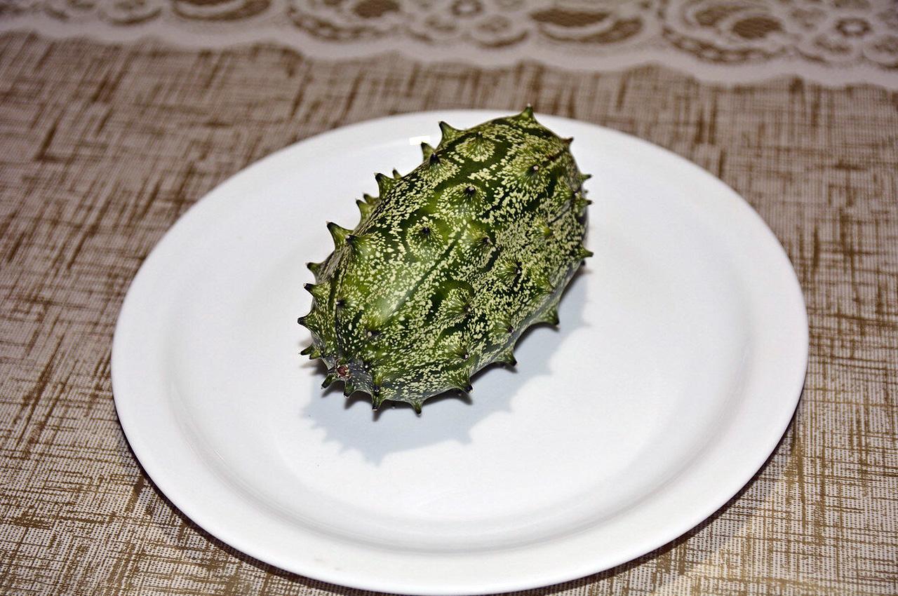 Angurija (melionas)