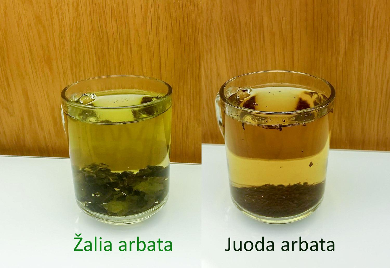 Arbata žalia ir juoda (palyginimas)