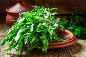 Augalų gydomosios savybės