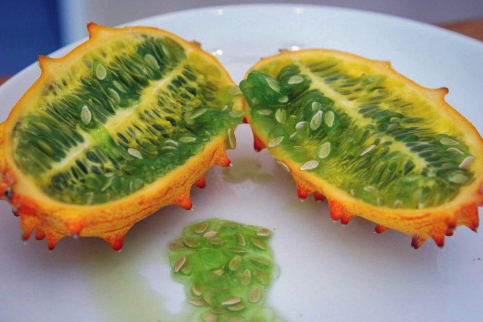 Kiwano melionai