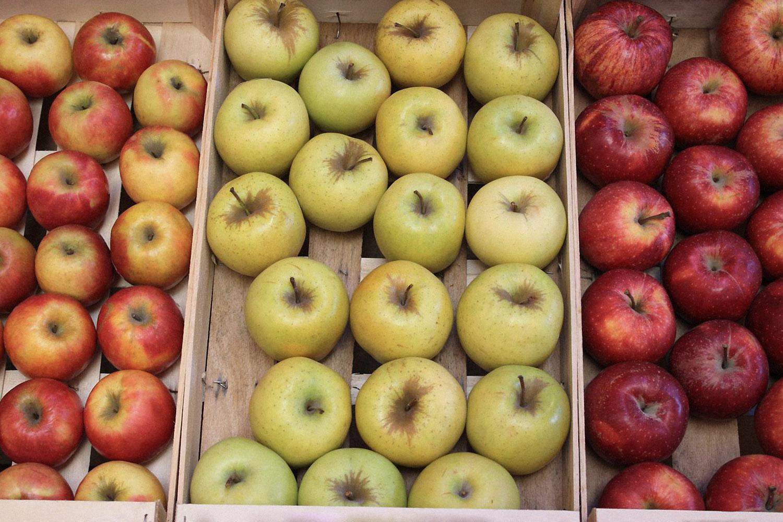 Obuolių laikymas per žiemą