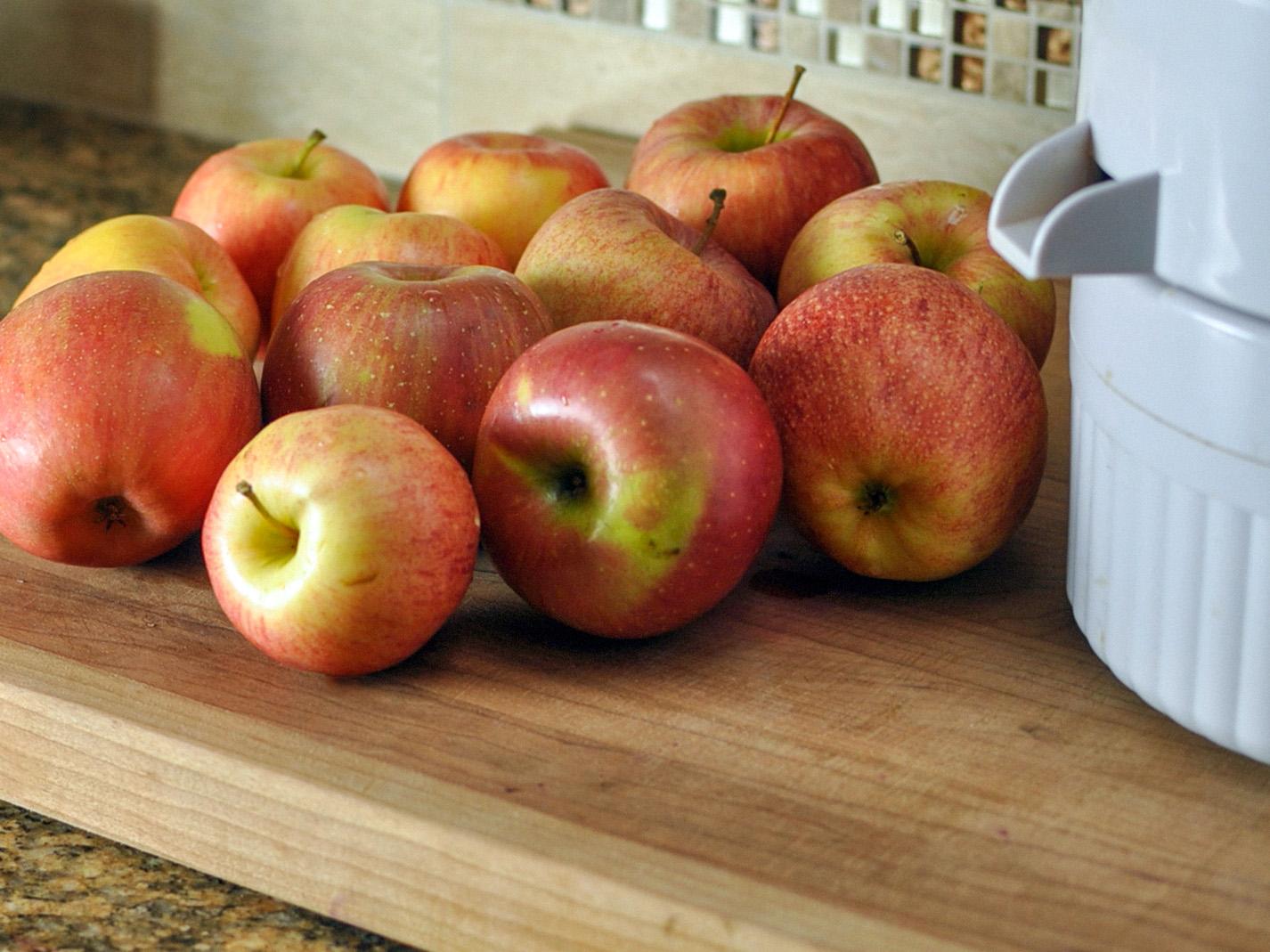 Obuolių sulčių spaudimas (acto gamybai)